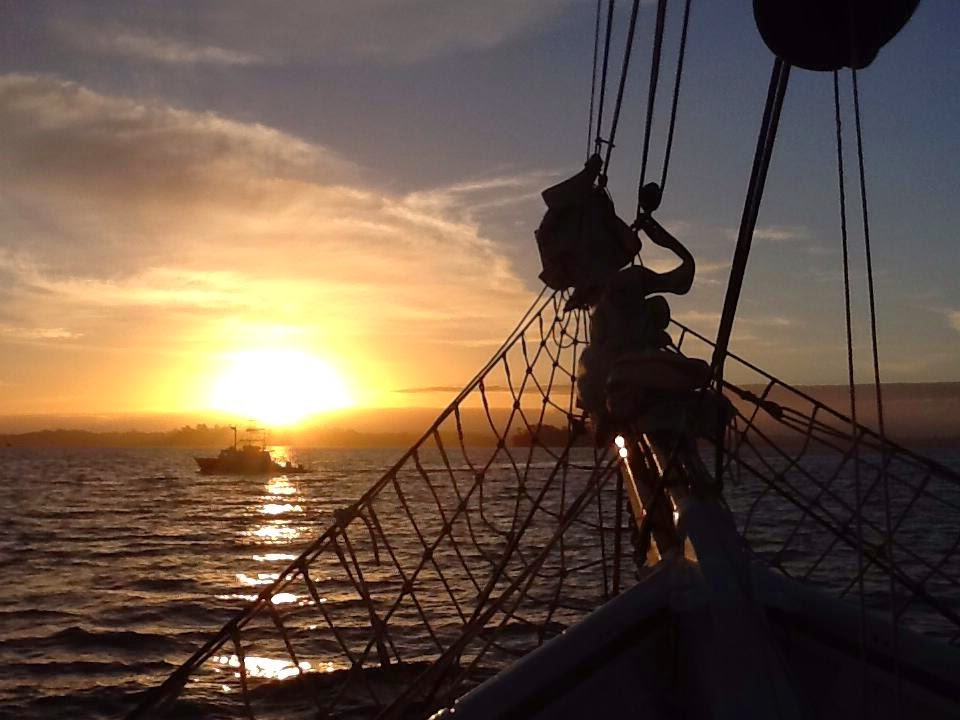 A new way? A glimpse of hope? Sail with us into the glorious sunrise!