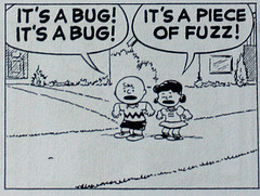 Fuzzing, by the Peanuts.